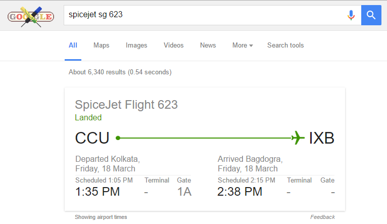 Flight Status in google